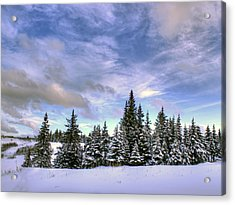 Acrylic Print featuring the photograph Winter Sky by Michele Cornelius