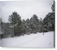 Winter Slope Acrylic Print by Tessa Priddy