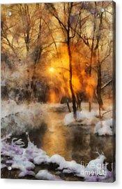 Winter Sunset Acrylic Print by Elizabeth Coats