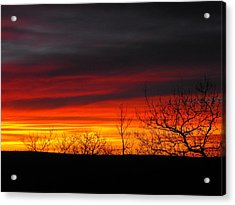 Winter Sunset Acrylic Print by Rebecca Cearley