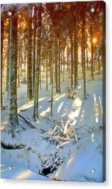 Acrylic Print featuring the photograph Winter Sunset by Rod Jones