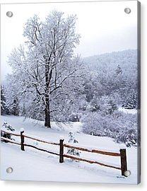Winter Tree And Fence In The Valley Acrylic Print