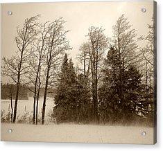 Acrylic Print featuring the photograph Winter Treeline by Hugh Smith