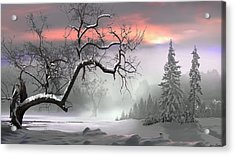 Winter Trees Acrylic Print by Igor Zenin