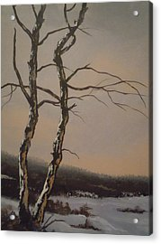 Winter Trees Acrylic Print by James Guentner