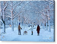 Winter Twilight Walk Acrylic Print by Susan Cole Kelly