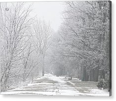 Acrylic Print featuring the mixed media Winter Walkway by Bruce Ritchie