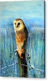 Acrylic Print featuring the painting Winter Watch by Lynn Hughes