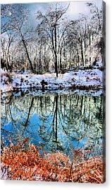 Winter Wonder Acrylic Print by Kristin Elmquist