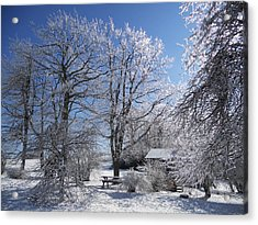 Acrylic Print featuring the photograph Winter Wonderland  by Diannah Lynch