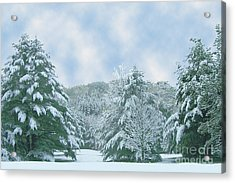 Acrylic Print featuring the photograph Winter Wonderland In The South by Michael Waters