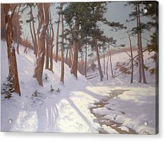 Winter Woodland With A Stream Acrylic Print by James MacLaren