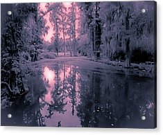 Winterland In The Swamp Acrylic Print by DigiArt Diaries by Vicky B Fuller