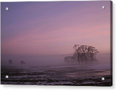 Acrylic Print featuring the photograph Winters Eve by David Grant