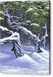 Winters Ghost Acrylic Print