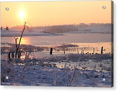 Acrylic Print featuring the photograph Winter's Morning by Elizabeth Winter