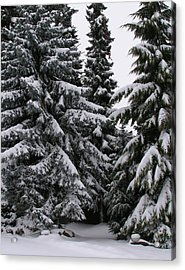 Winters Silence Acrylic Print by Rand Swift