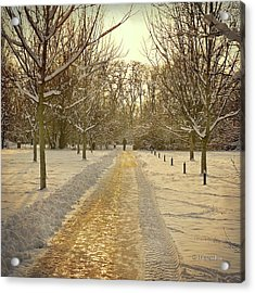 Wintry Golden Light At Sunset Acrylic Print by by MargoLuc