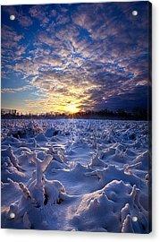 Wisconsin's Winter Wonderland Acrylic Print by Phil Koch
