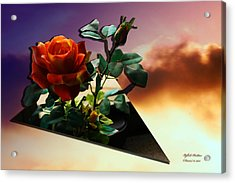 Acrylic Print featuring the photograph With Love by Itzhak Richter