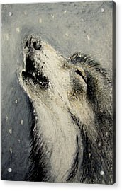Acrylic Print featuring the drawing Wolf Cry...... Miniature by Lynn Hughes