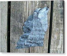 Wolf Howl3 Acrylic Print by Monika Shepherdson