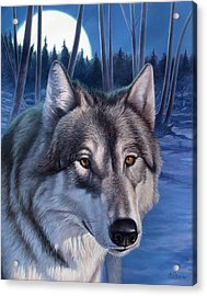 Wolf In Moonlight Acrylic Print by Hans Droog