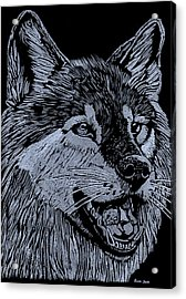Wolfie Acrylic Print by Jim Ross