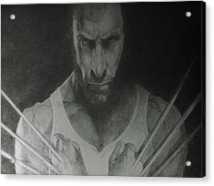 Wolverine Acrylic Print by Glenn Daniels