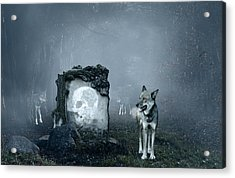 Wolves Guarding An Old Grave Acrylic Print by Jaroslaw Grudzinski