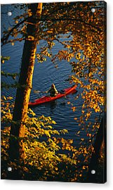 Woman Seakayaking On The Potomac River Acrylic Print by Skip Brown