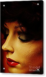 Womankin Acrylic Print by David Taylor