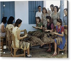 Women Inspect Tobacco Leaves And Select Acrylic Print by Melville B. Grosvenor