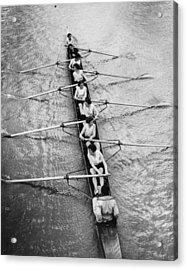 Women's Rowing Acrylic Print by William Wanderson