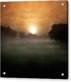 Wonder Acrylic Print by Ian David Soar
