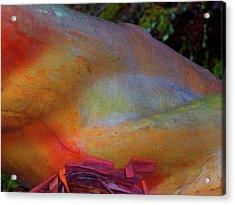 Acrylic Print featuring the digital art Wonder by Richard Laeton