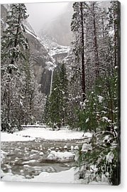 Wonderland Yosemite Acrylic Print by Heidi Smith