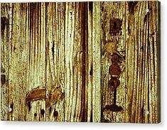 Wood Grain Acrylic Print by Georgia Fowler