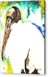 Wood Stork Acrylic Print by Anthony Burks Sr