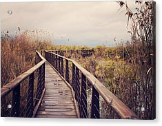 Wooden Path On The Lake Acrylic Print by Copyright Anna Nemoy(Xaomena)