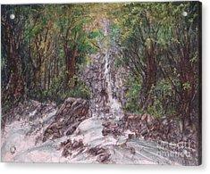 Woodland Falls Acrylic Print by Ronald Tseng