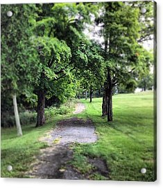 #woodland #forest #green #trees #path Acrylic Print