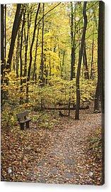 Woodland Respite Acrylic Print