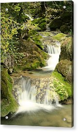 Woodland Waterfall Acrylic Print by Victoria Hillman