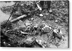 World War I, Skeleton Of A Dead German Acrylic Print by Everett
