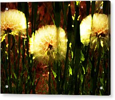 Worlds Within Worlds Acrylic Print by Lenore Senior