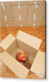 Wrapped Gift Box Inside Cardboard Box Acrylic Print by Sami Sarkis