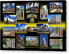 Acrylic Print featuring the photograph Wsu Collage by Brian Duram