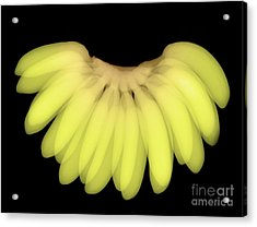 X-ray Of Bananas Acrylic Print by Ted Kinsman