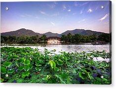 Xianghu - Lotus (xiaoshan) Acrylic Print by Andy Brandl